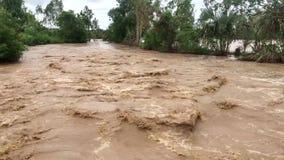 Fluss in der vollen Flut stock video