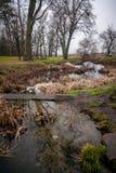 Fluss, der Wiese am Herbst durchfließt Stockfotografie