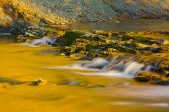 Fluss des Bieres Stockfotografie
