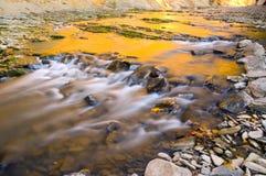 Fluss des Bieres Stockbild