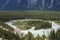 Fluss des Gletscherwassers schlängelt sich durch Wald Stockfotos