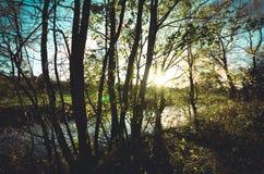 Fluss des Lebens Stockfotografie