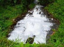 Fluss des weißen schaumigen Wassers, das weg in Grün läuft Lizenzfreie Stockfotos