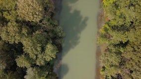 Fluss-Donau-Ansicht stock footage