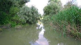 Fluss in Donau-Delta stock footage