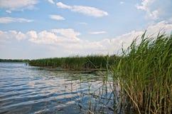 Fluss Dorf Pluta Ukraine Stockbilder