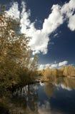 Fluss Drava Stockfoto
