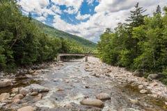 Fluss durch Wald nahe den weißen Bergen, eine Brücke im backg Stockfotografie
