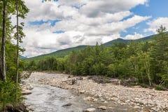 Fluss durch Wald nahe den weißen Bergen, New Hampshire Stockbild