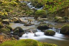 Fluss in einem sonnigen Herbst Stockfotografie