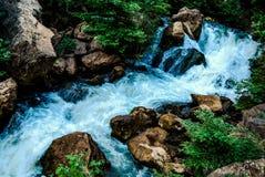 Fluss in einem Wald Lizenzfreie Stockbilder