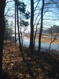 Fluss in einem Waldland Stockfotografie