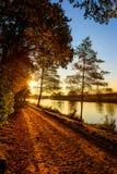 Fluss Ems-Landschaft Lizenzfreie Stockbilder
