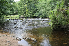 Fluss am Ende von Nidd-Schlucht, Knaresborough Stockbild