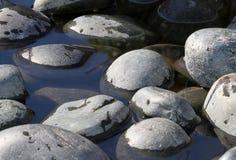 Fluss-Felsen Lizenzfreie Stockfotos
