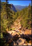 Fluss-Felsen Lizenzfreie Stockfotografie