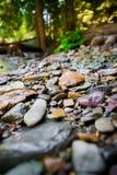Fluss-Felsen mit unscharfem Hintergrund lizenzfreie stockfotografie