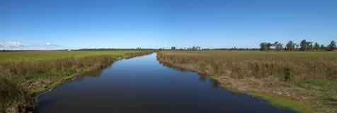 Fluss-Feuchtgebiets-Panorama, panoramisch, Natur-Fahne lizenzfreies stockfoto