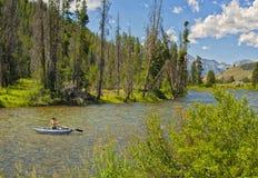 Fluss-Fischen, Idaho lizenzfreie stockbilder