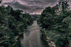 Fluss Forest Nature Lizenzfreies Stockfoto