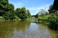 Fluss Forest Nature Stockbild