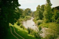 Fluss Forest Nature Lizenzfreie Stockfotos