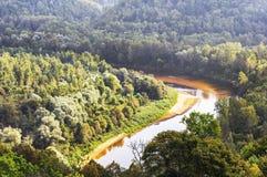 Fluss Gauja Jahrhundert und im Gauja Fluss zurück lizenzfreie stockfotos
