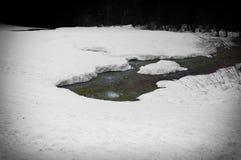Fluss gebildet unter dem Monat des Schichtschnees im April, nahe zum Wald stockfotos