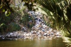 Fluss gefüllt mit Abfall und Plastik Lizenzfreie Stockfotografie