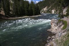 Fluss Grand Canyon s von Yellowstone Nationalpark Lizenzfreies Stockfoto