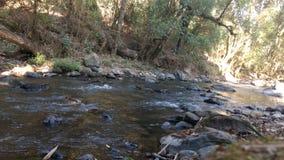 Fluss herein u. x27; temascaltepec& x27; Stockbild