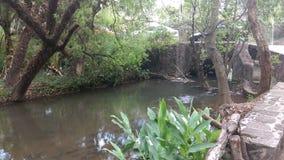Fluss herein u. x27; Valle de Bravo& X27; Stockbild