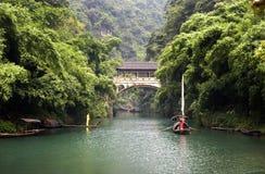 Fluss im Bambuswald Stockbild