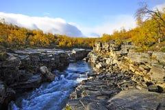 Fluss im Herbst Stockbild