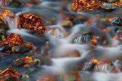 Fluss im Herbst Stockfotos
