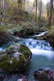 Fluss im Herbst Stockfotografie