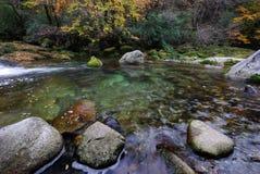 Fluss im Herbstwald Lizenzfreie Stockbilder