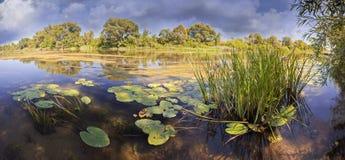 Fluss im Morgenlicht stockfotografie