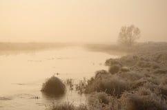 Fluss im Nebel Lizenzfreies Stockfoto