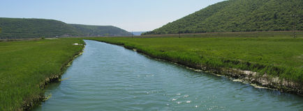 Fluss im Panorama des grünen Tales Lizenzfreie Stockfotos