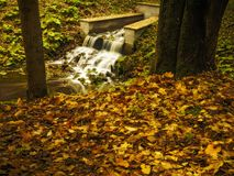 Fluss im Park Lizenzfreie Stockbilder