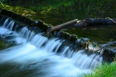 Fluss im schottischen Park Stockfotos