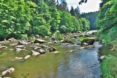 Fluss im Tal Lizenzfreie Stockfotos