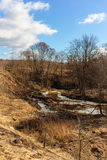 Fluss im Vorfrühling Stockbilder