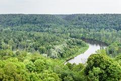 Fluss im Wald von oben Stockfotografie