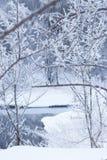 Fluss im Winter. Strand im Schnee. Stockbild