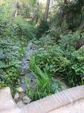 Fluss innerhalb des Waldes Stockbilder