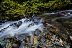 Fluss in Irland lizenzfreies stockfoto