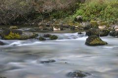 Fluss Iskretc Bulgarien stockfoto