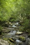 Fluss Italien Abruzzo Lizenzfreies Stockbild
